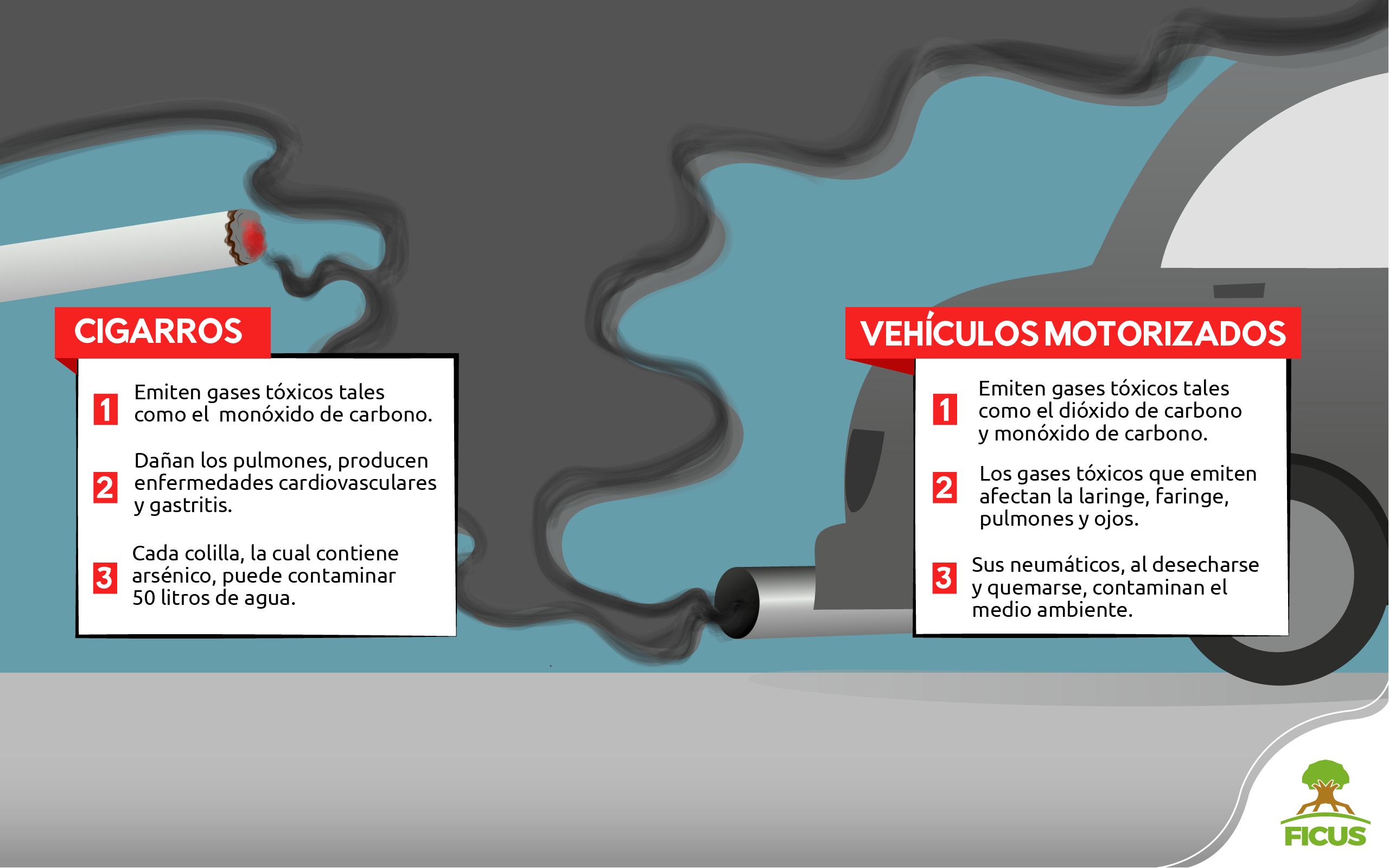 contaminacion y transporte